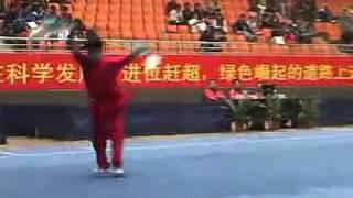 2010年全国武术套路锦标赛(传统)M05 001 男子双钩 王宏胤