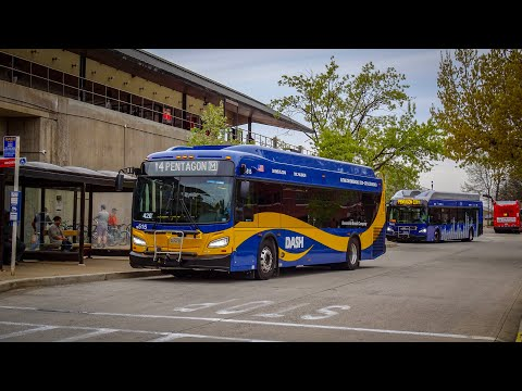 DASH Alexandria Transit Company NEW 2019 New Flyer Xcelsior XD35 In Action
