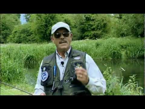 Born To Fish  Fly Fishing Hampshire Avon
