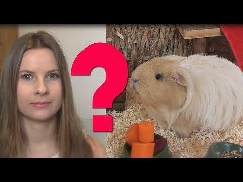 DUBEN: PANNA Zmatky a nejasnosti řeší intuice from YouTube · Duration:  2 minutes 9 seconds