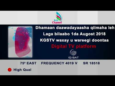 Hornsat Tv Frequency