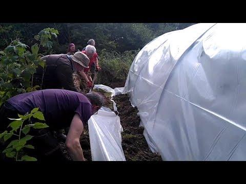 Kann man in Irland Kiwis anbauen? Und wie zieht man eine neue Folie auf ein Gewächshaus?