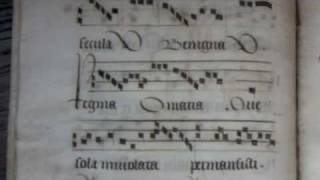Inviolata integra et casta es Maria (Gregorian Chant by Chant Group Psallentes)