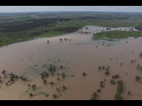 Australia Repeating 1790's Wet And Cold Pattern, Crop Losses Follow | Mini Ice Age 2015-2035 (216)