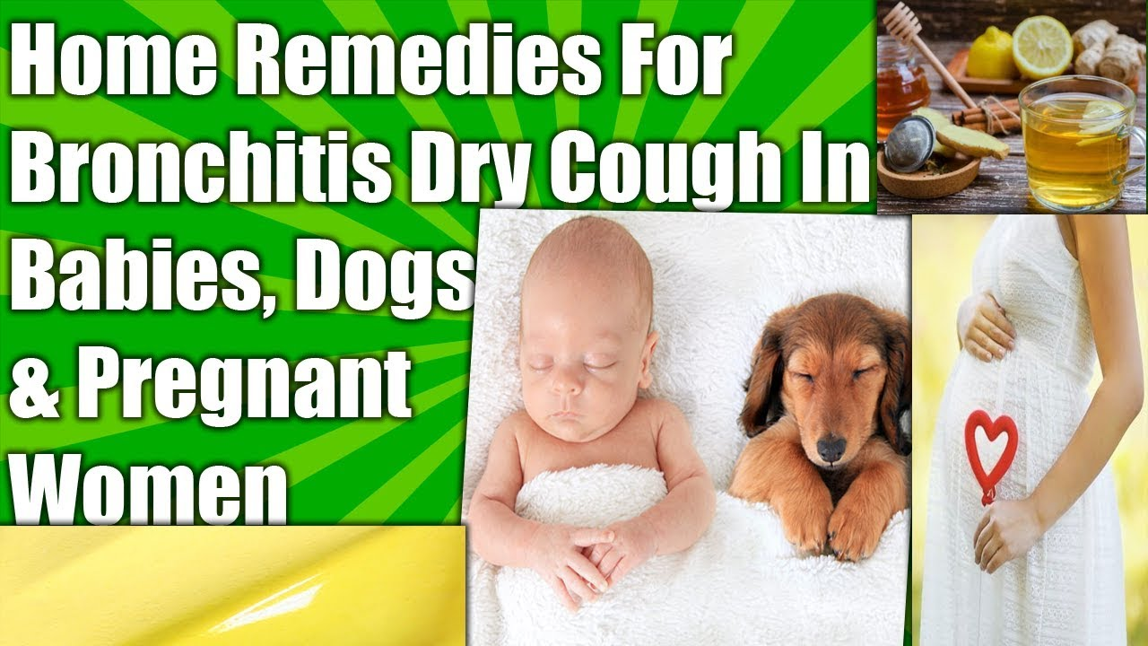 🌿HOME REMEDIES FOR BRONCHITIS DRY COUGH IN DOGS, BABIES & PREGNANT