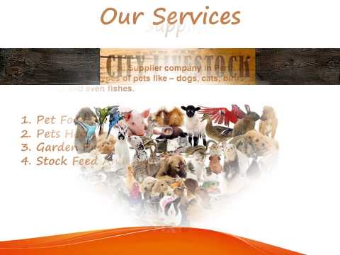 Stock Feed Animal Supplies | City Livestock