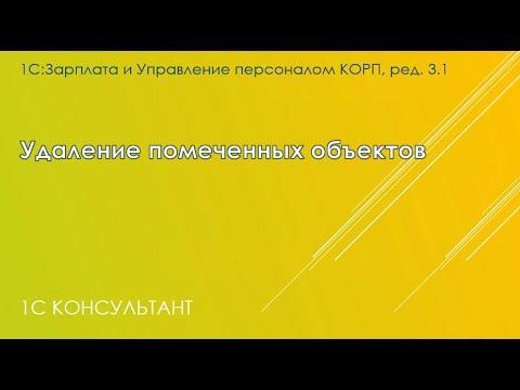 Удаление помеченных объектов в 1С: ЗУП 3.1