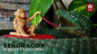Señor Loop - El Mono y la Culebra (Desde Casa)