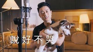 《説好不哭》- 周杰倫 Jay Chou【Sam Lin Cover】