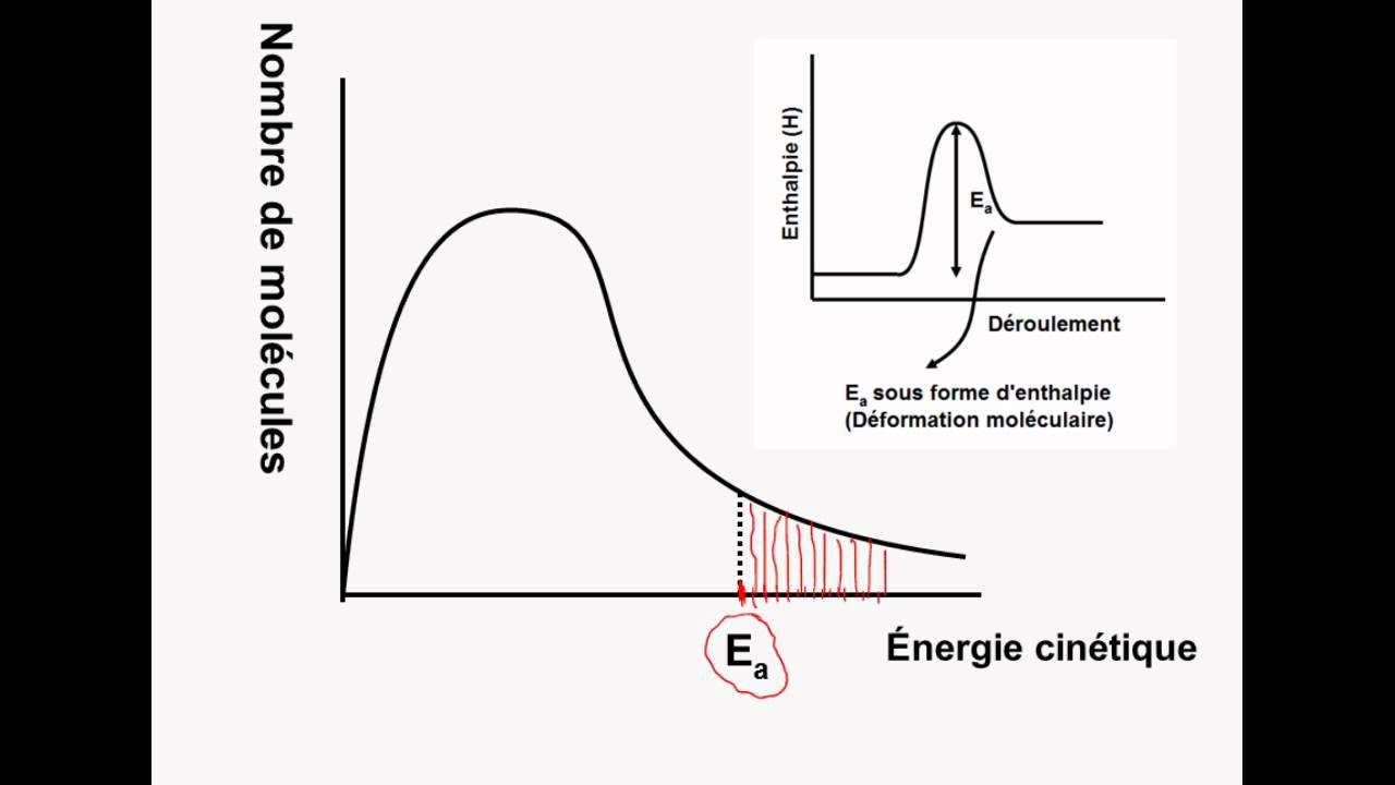 medium resolution of r le de l nergie d activation dans un graphique de distribution