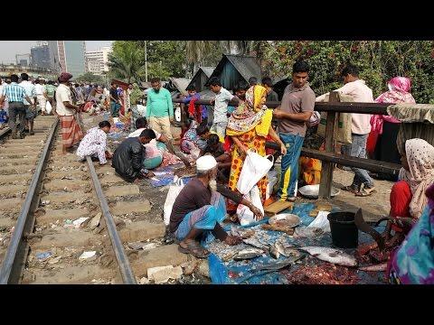 Ridiculous Fish Cutting / Slice Section In Railway Fish Market Karwan Bazar