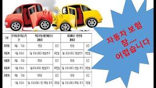 자동차 보험의 구성 2편