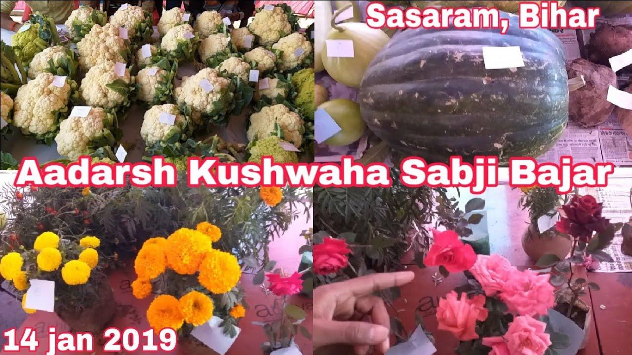 सब्जी, फल, फूल प्रद॔शनी मेला full vlog   14 Jan Makar Sankranti - Aadarsh Kushwaha Sabji bajar