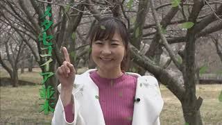 テレビ滋賀プラスワン 「プチ旅気分で春のおでかけ」~スポット&スイーツ~(2019年4月21日(日)放送)