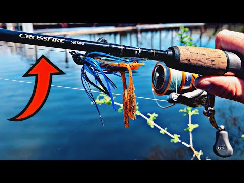 Daiwa Crossfire Review | ONLY $20!!