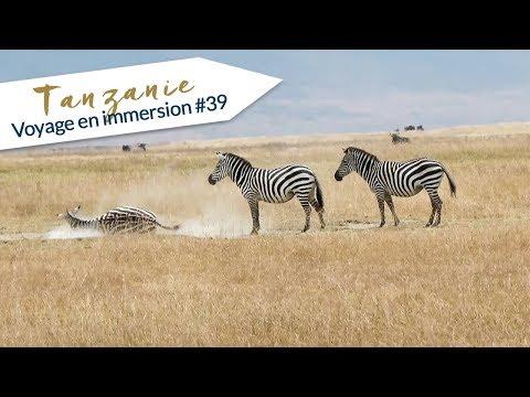 TANZANIE : Voyage en Immersion #39