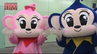 今回訪れたのはあの人気テーマパーク「日本モンキーパーク」です! なぜ...