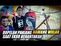 Trucukan Nawang Wulan Nge Ropel Panjang Ainor Gokil Launching Abdi Jaya  Mp3 - Mp4 Download