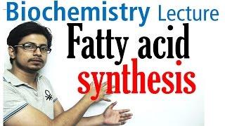 Fatty acid synthesis