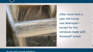 jeld wen auralast wood overview