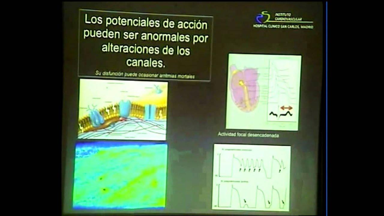 Dr. Pérez-Villacastín. Anatomía y fisiología cardiaca básica ...