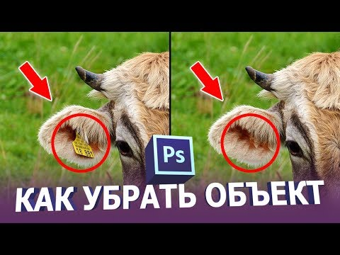 Как убрать лишний объект в фотошопе
