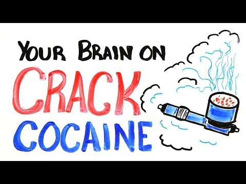 Your Brain On Crack Cocaine