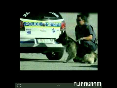 Tribute to the South African Police Service