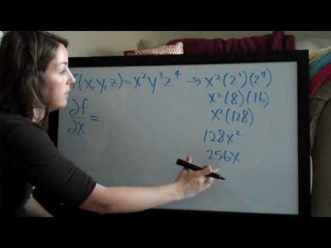 Partial Derivatives (KristaKingMath)