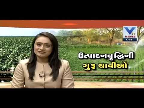 Tricks For More Production In Agriculture | Kheti | 31 July'16 | VTV Gujarati