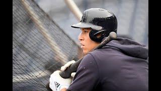 Yankees' Aaron Judge batting practice highlights