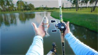 Fishing a $1,000,000 Pond!!