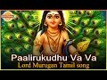 Download Lord Murugan Tamil Devotional Songs | Paalirukudhu Va Va Tamil Songs | Devotional TV MP3 song and Music Video