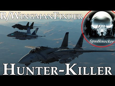 DCS: World | Hunter-Killer DEAD Ops! | F-14B Tomcats & F/A-18C Hornets Work Together To Kill SAMs!