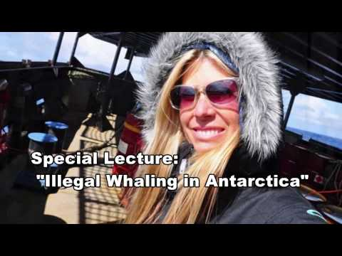 "Special Lecture ""Illegal Whaling in Antarctica"" with filmmaker Erin Calms"