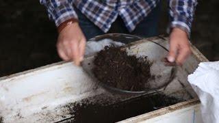 Просеивание биогумуса-сырца. Фермерское хозяйство