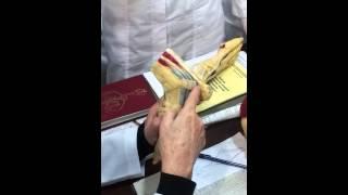 Анатомия человека- нижняя конечность(Видео урок)