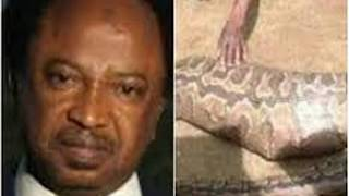 Senator Shehu Sani storms JAMB office with snake charmers to search for the N36 million