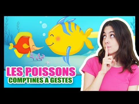 Les petits poissons dans l'eau - Comptines à gestes pour les bébés - Titounis