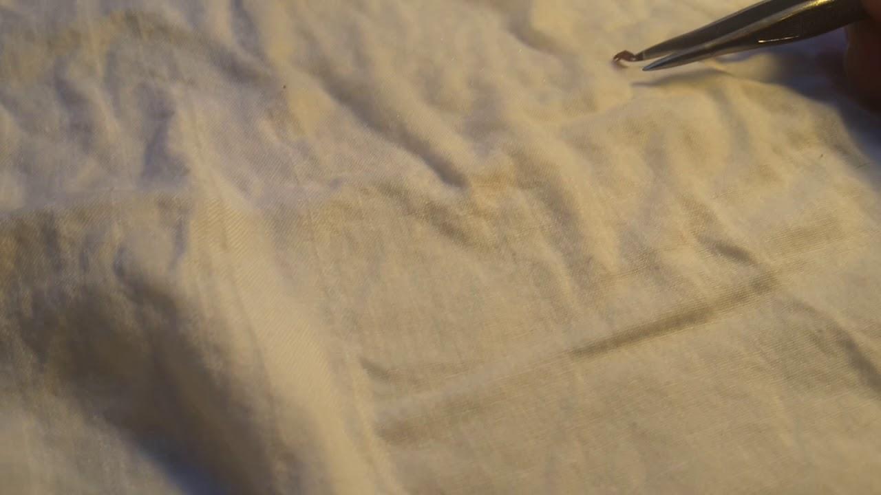 Testing Say Bye Bugs Spray On Bed Bug Youtube