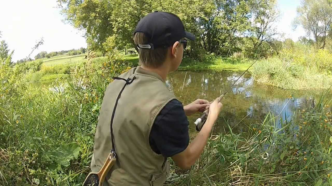 Fly fishing wisconsin trout august 2012 youtube for Wisconsin out of state fishing license