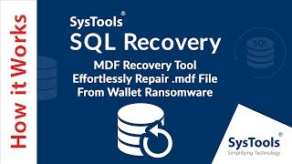 MDF Recovery Tool - Effortlessly Repair .mdf File From Wallet Ransomware