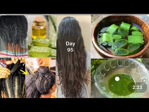 Download እሬት ለፈጣን የፀጉር እድገት ለተጎዳ ፀጉር በአጭር ግዜ ለውጥ ታያላችሁ // 3 WAYS TO USE ALOE VERA FOR EXTREME HAIR Growth