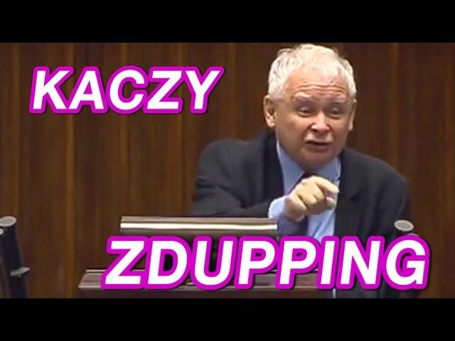 KACZY ZDUPPING