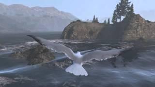 Grand Theft Auto V localização peyote gaivota