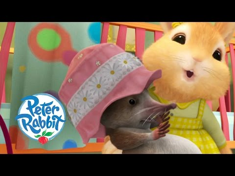 Peter Rabbit - Cottontail's New Friend
