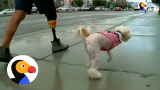 Amputee Adopts Dog That is Also Missing A Leg | The Dodo