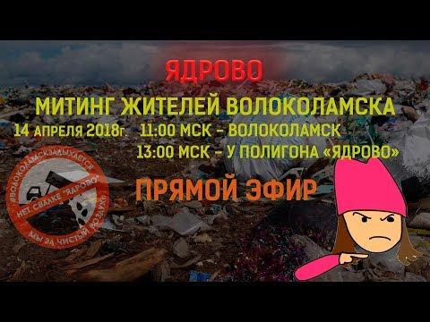 МИТИНГ в Волоколамске и возле 'ЯДРОВО'
