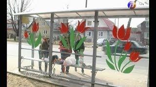 Остановочные павильоны в городе украсили цветами.(Руки к этому приложили волонтерские объединения города., 2014-04-21T12:29:11.000Z)