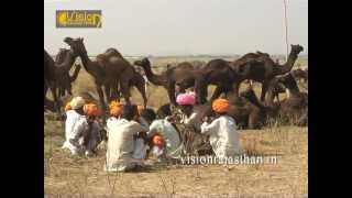 Pushkar fair as a cattle fair